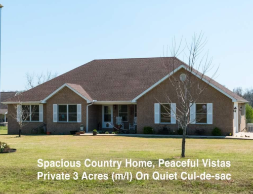 NEW Beautiful Listing in Gassville, AR